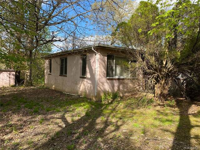 2 First, Woodbury Town, NY 10930 (MLS #H6038468) :: Signature Premier Properties