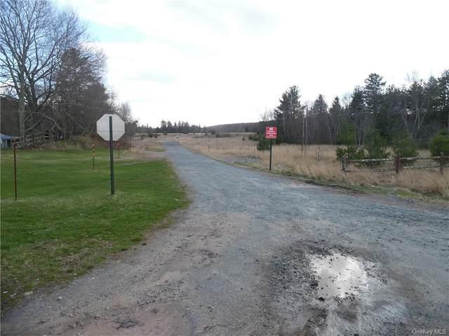 Dove Trail, Bethel, NY 12720 (MLS #H6038537) :: Cronin & Company Real Estate