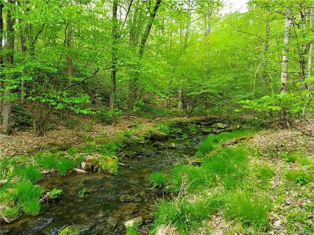 Mount Vernon Road, Mamakating, NY 12790 (MLS #H6038658) :: Cronin & Company Real Estate