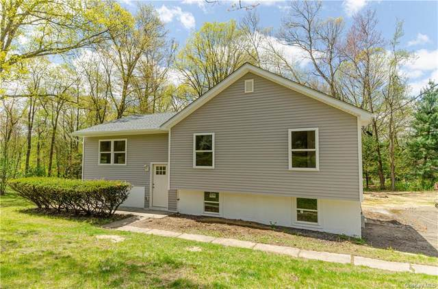 10 Montfort Road, Wappinger, NY 12590 (MLS #H6038692) :: Cronin & Company Real Estate