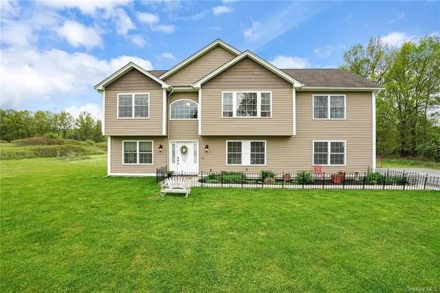 410 Beattie Road, New Windsor, NY 12575 (MLS #H6038787) :: Cronin & Company Real Estate