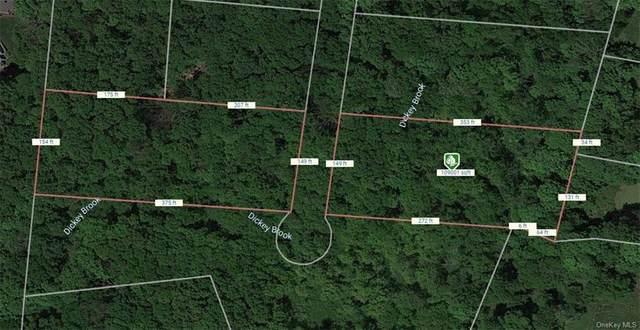 Lot 15 Buttonwood Avenue, Cortlandt, NY 10567 (MLS #H6038945) :: Cronin & Company Real Estate