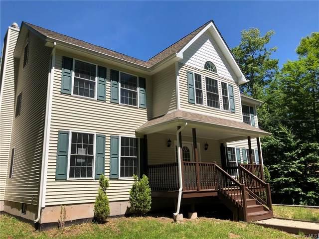 21 Winterthur Road, Fallsburg, NY 12789 (MLS #H6038983) :: Mark Boyland Real Estate Team