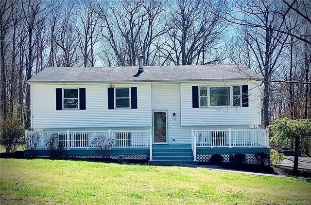 132 Greenwood Road N, Mamakating, NY 12790 (MLS #H6039034) :: Cronin & Company Real Estate