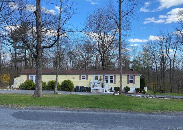 173 Cox Road, Mamakating, NY 12566 (MLS #H6039139) :: Cronin & Company Real Estate