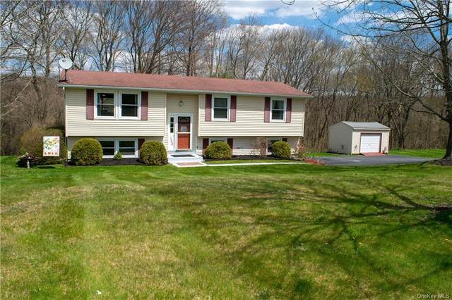 146 Susan Drive, Union Vale, NY 12570 (MLS #H6039151) :: Cronin & Company Real Estate