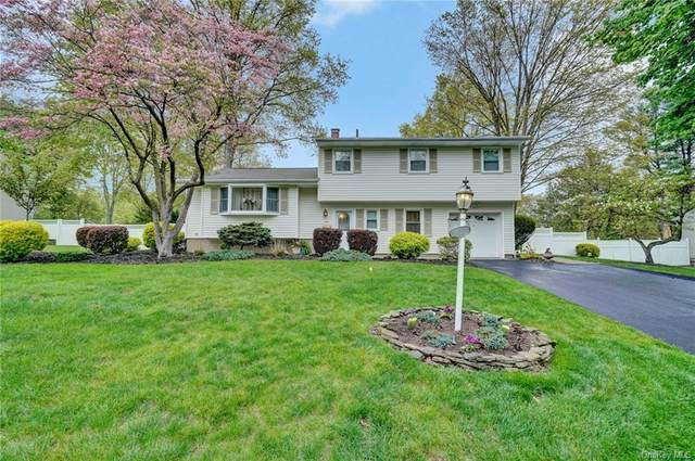43 Capral Lane, Clarkstown, NY 10956 (MLS #H6039166) :: Cronin & Company Real Estate