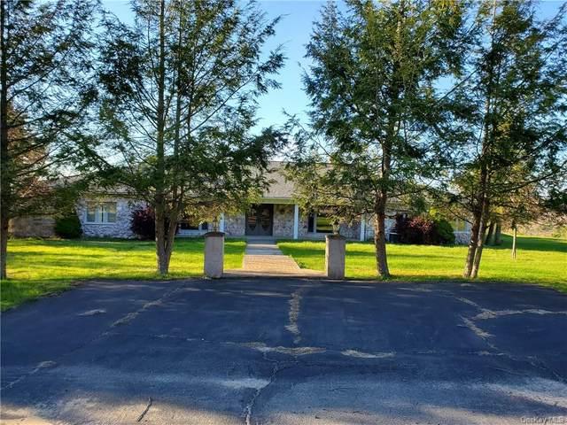 128 Wood Oak Drive, Tusten, NY 12764 (MLS #H6039238) :: Cronin & Company Real Estate