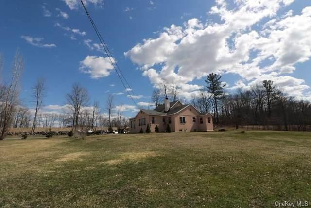 111 Black Hawk Road, Crawford, NY 12566 (MLS #H6039255) :: Cronin & Company Real Estate