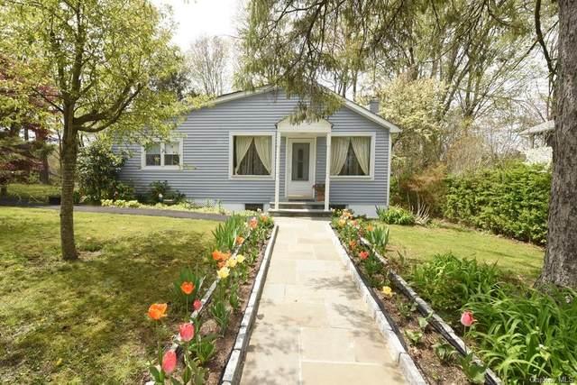 396 Haviland Drive, Patterson, NY 12563 (MLS #H6039281) :: Cronin & Company Real Estate