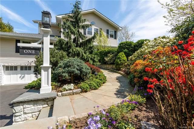 1 Adelphi Avenue, Harrison, NY 10528 (MLS #H6039310) :: Mark Boyland Real Estate Team