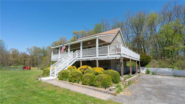 179 Plains Road, Montgomery Town, NY 12586 (MLS #H6039318) :: Cronin & Company Real Estate