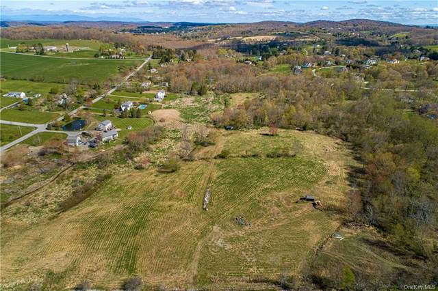 N Parliman Road, Union Vale, NY 12540 (MLS #H6039415) :: Cronin & Company Real Estate