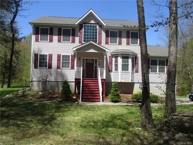 91 Glen Rock Circle, Plattekill, NY 12528 (MLS #H6039428) :: William Raveis Legends Realty Group
