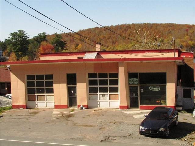 4803 State Route 55, Liberty Town, NY 12783 (MLS #H6039548) :: Signature Premier Properties