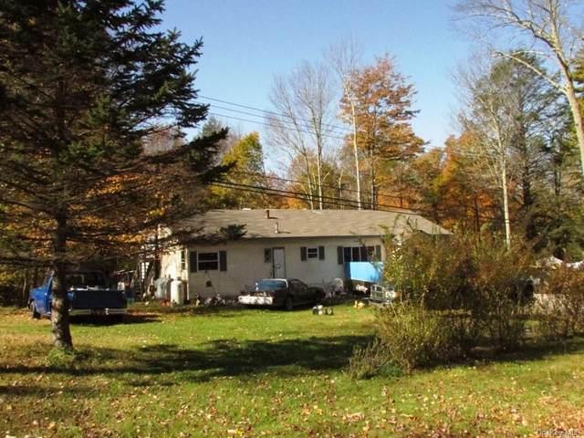 138 Old White Lake Turnpike, Bethel, NY 12783 (MLS #H6039555) :: Signature Premier Properties