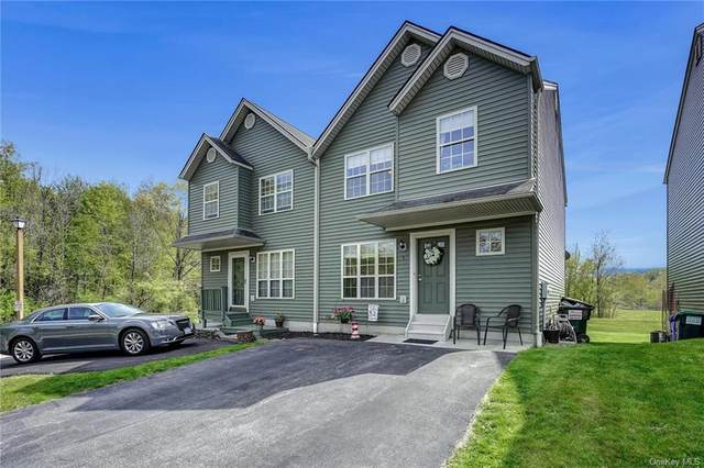 3 Argent Drive, Lloyd, NY 12528 (MLS #H6039570) :: William Raveis Legends Realty Group