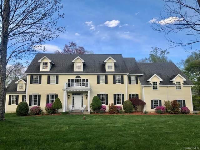 19 Autumn Ridge Court, Somers, NY 10536 (MLS #H6039578) :: Signature Premier Properties