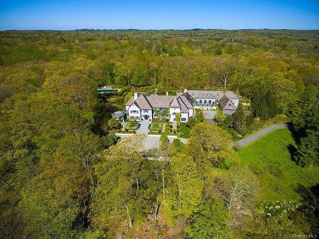 14 Cowdray Park Drive, North Castle, NY 10504 (MLS #H6039585) :: Cronin & Company Real Estate