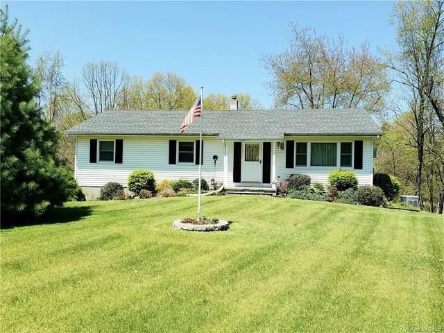 8 Schoonmaker Drive, Plattekill, NY 12525 (MLS #H6039631) :: William Raveis Baer & McIntosh