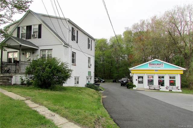 235 Main, New Paltz, NY 12561 (MLS #H6039639) :: Cronin & Company Real Estate