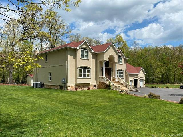 10 Addison Boyce Drive, Clarkstown, NY 10956 (MLS #H6039706) :: Cronin & Company Real Estate