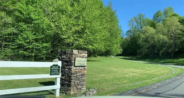 6 Apple Mill Road, North Salem, NY 10560 (MLS #H6039744) :: Kendall Group Real Estate | Keller Williams