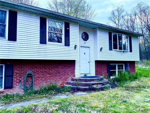 61 Nelson Road, Warwick Town, NY 10950 (MLS #H6039798) :: The Ramundo Team