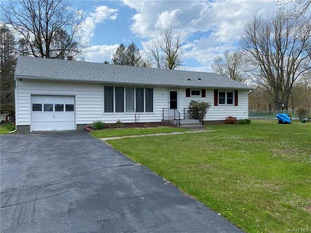 8 Osborn Road, Thompson, NY 12701 (MLS #H6039822) :: Cronin & Company Real Estate