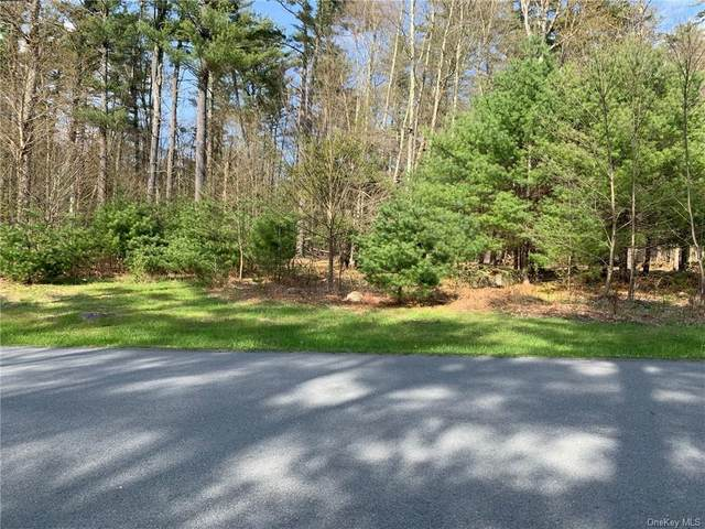 Misty Acres Lot 24, Bethel, NY 12720 (MLS #H6039843) :: William Raveis Legends Realty Group