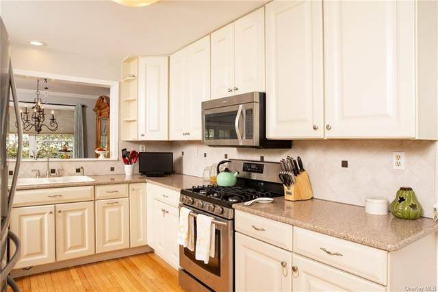 2 Birkdale Court, Poughkeepsie Town, NY 12603 (MLS #H6039968) :: Marciano Team at Keller Williams NY Realty