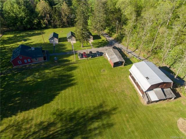 7 Guiliano Drive, Tillson, NY 12486 (MLS #H6040042) :: Frank Schiavone with William Raveis Real Estate