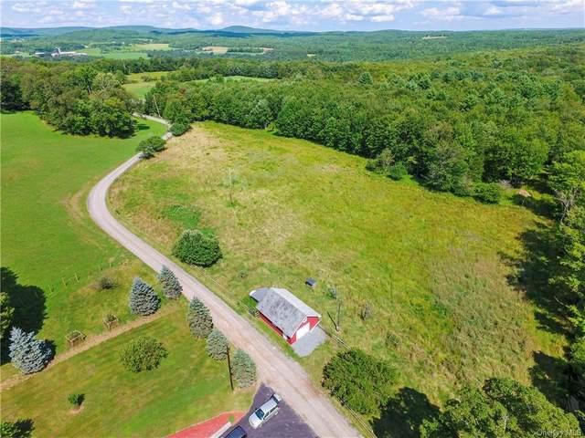 5 Smith Road, Bethel, NY 12783 (MLS #H6040076) :: Signature Premier Properties