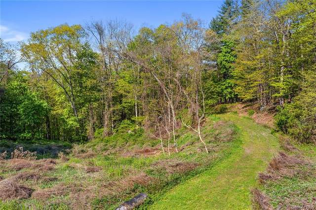 43 Reyburn Road, Bedford, NY 10536 (MLS #H6040077) :: Cronin & Company Real Estate