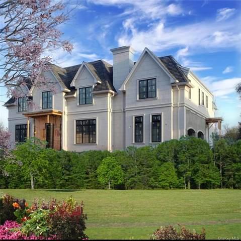 22 Sherri Lane, Ramapo, NY 10977 (MLS #H6040079) :: Cronin & Company Real Estate