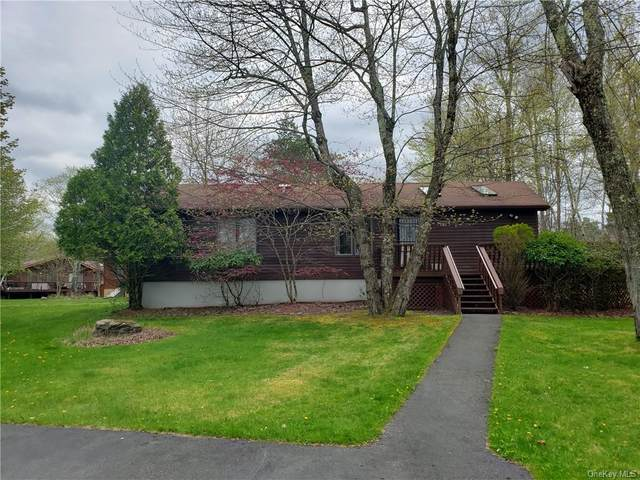 65 Lake View Drive, Liberty Town, NY 12783 (MLS #H6040082) :: William Raveis Baer & McIntosh