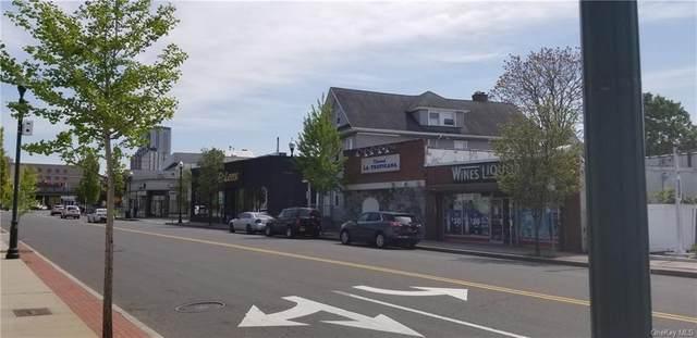 442 North, New Rochelle, NY 10801 (MLS #H6040084) :: Cronin & Company Real Estate