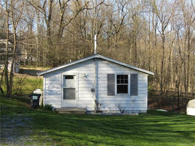 62 Everett Road, Hamptonburgh, NY 10916 (MLS #H6040122) :: Cronin & Company Real Estate