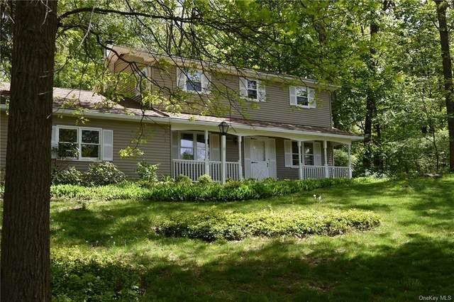 11 Somers Drive, Rhinebeck, NY 12572 (MLS #H6040130) :: Frank Schiavone with William Raveis Real Estate