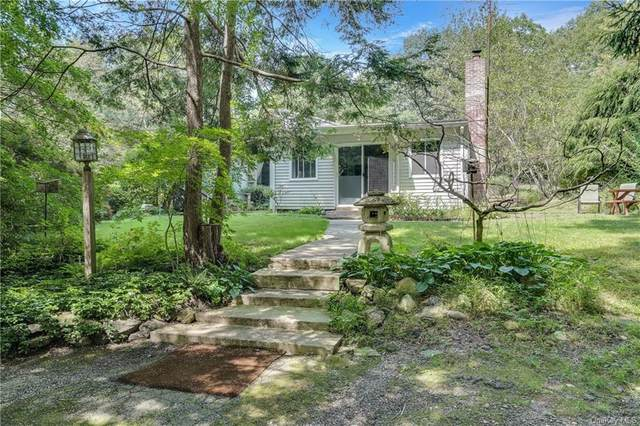 10 Pond Meadow Road, Cortlandt, NY 10520 (MLS #H6040141) :: Cronin & Company Real Estate