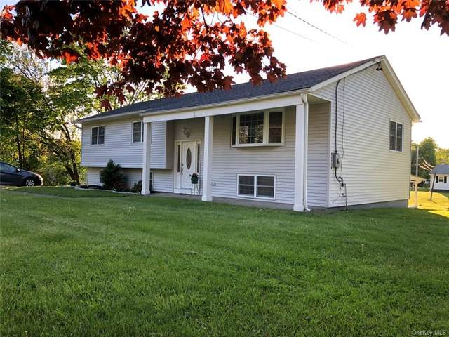748 Blooming Grove Turnpike, New Windsor, NY 12553 (MLS #H6040181) :: Cronin & Company Real Estate