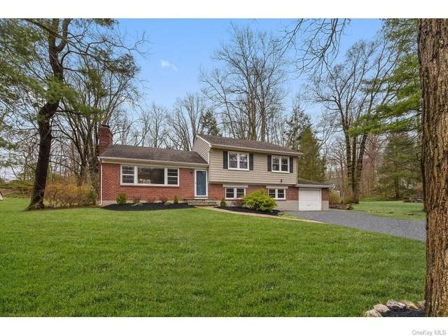 64 Lily Pond Lane, Bedford, NY 10536 (MLS #H6040195) :: Cronin & Company Real Estate