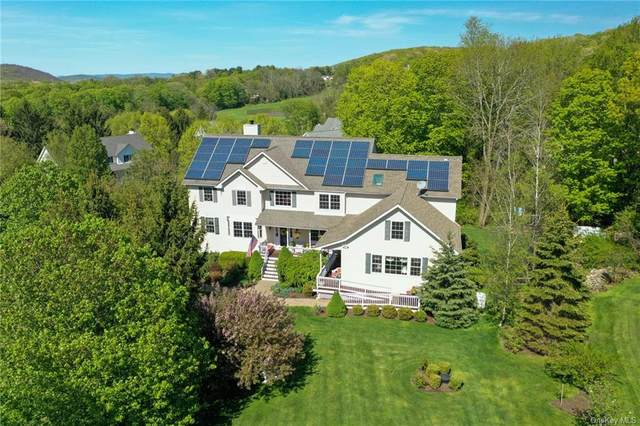 6 Hunter Lane, Pawling, NY 12564 (MLS #H6040200) :: William Raveis Baer & McIntosh