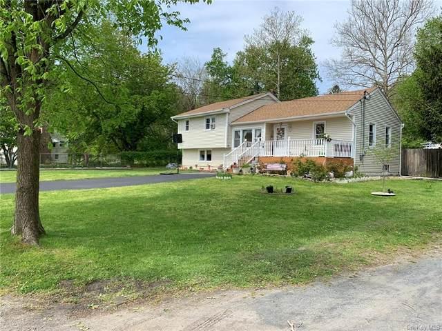 19 Riley Road, New Windsor, NY 12553 (MLS #H6040218) :: Cronin & Company Real Estate