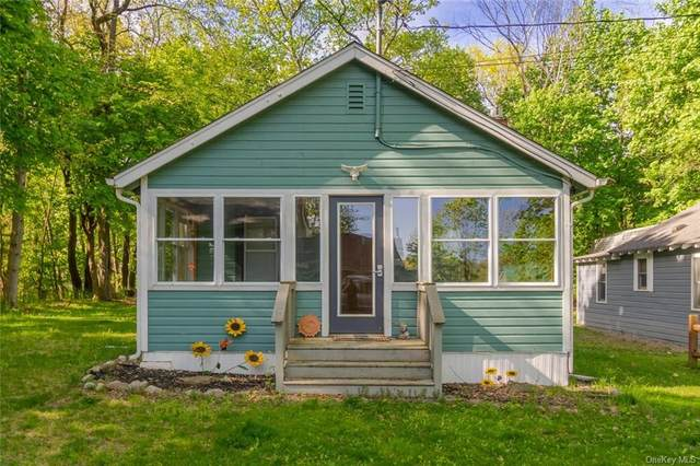 22 Summerside Avenue, Livingston, NY 12523 (MLS #H6040260) :: Cronin & Company Real Estate
