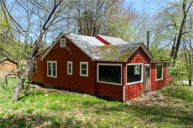 398 Kelly Bridge Road, Liberty Town, NY 12783 (MLS #H6040263) :: Signature Premier Properties