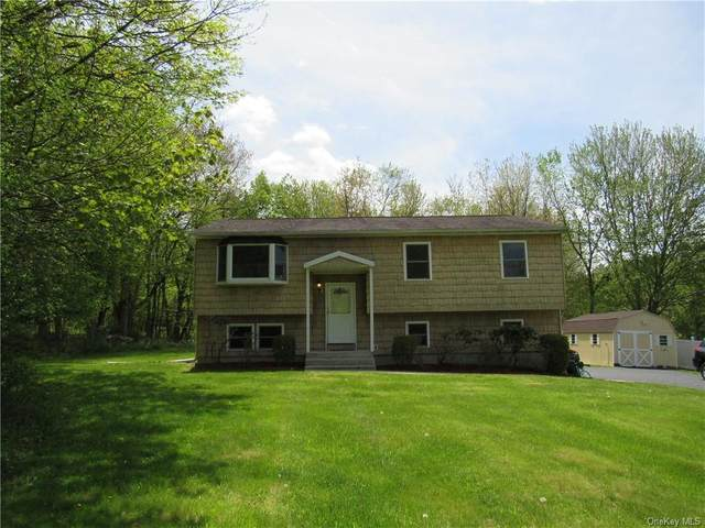117 School Road, Monroe Town, NY 10950 (MLS #H6040269) :: Cronin & Company Real Estate