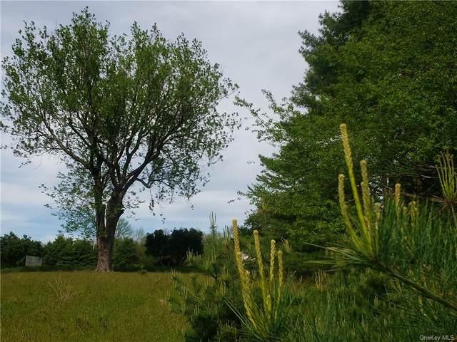 Mud Pond Road, Highland Lake, NY 12743 (MLS #H6040327) :: Frank Schiavone with William Raveis Real Estate