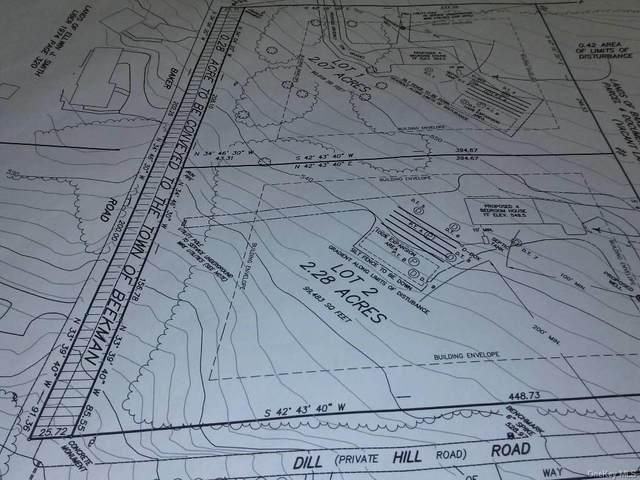 Dill Hill & Baker - Lot 2 Road, Beekman, NY 12533 (MLS #H6040346) :: Signature Premier Properties