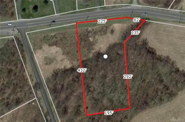 Dolsontown Road, Wawayanda, NY 10940 (MLS #H6040399) :: Cronin & Company Real Estate